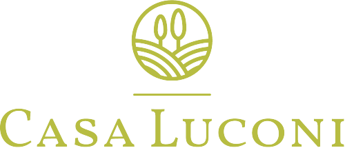 logo C A S A L U C O N I